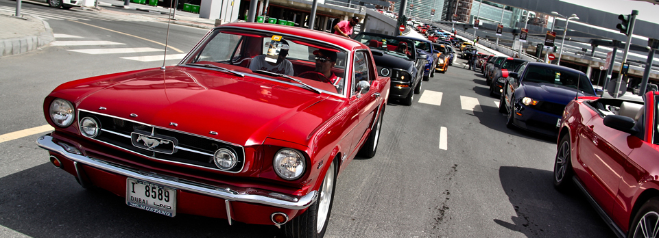 Over 300 Mustangs gathered on Saturday to celebrate 50 years of the iconic Pony car and we were in the parade!